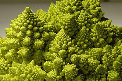 Романеско – «космический овощ»
