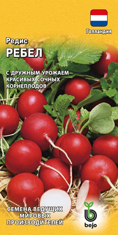 производители качественных семян редиса