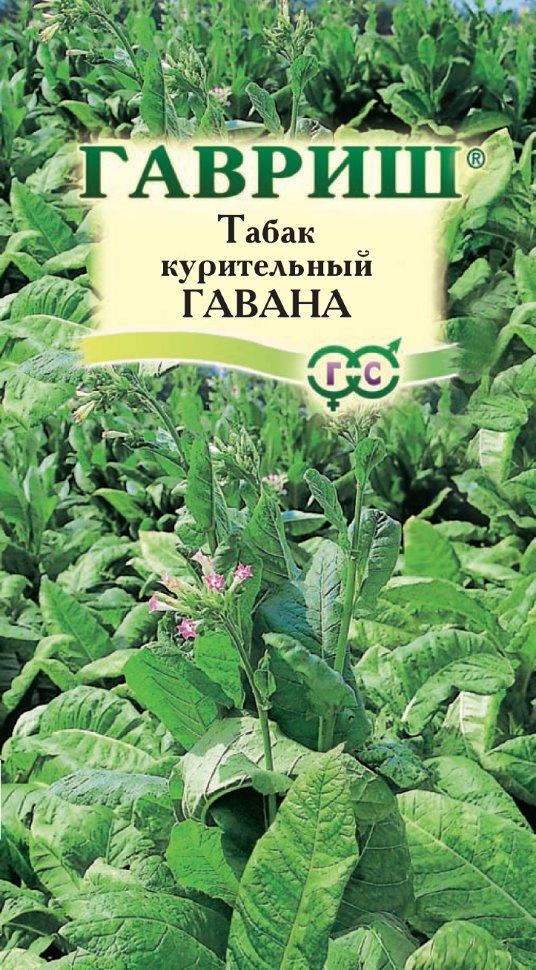 семена табака купить оптом