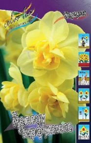 Нарцисс Йеллоу Чирфулнесс (Narcissus Yellow Cheerfulness), 10шт, Color Line